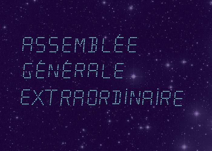 (Assemblée Générale Extraordinaire 2019 à Toulouse)*